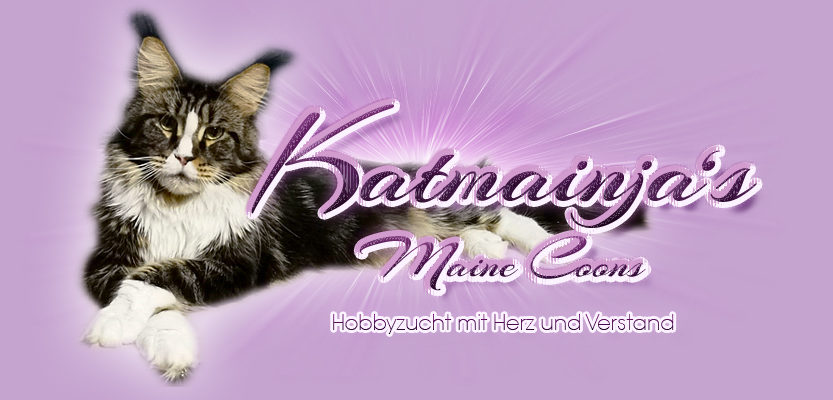 Katmainjas Maine Coons